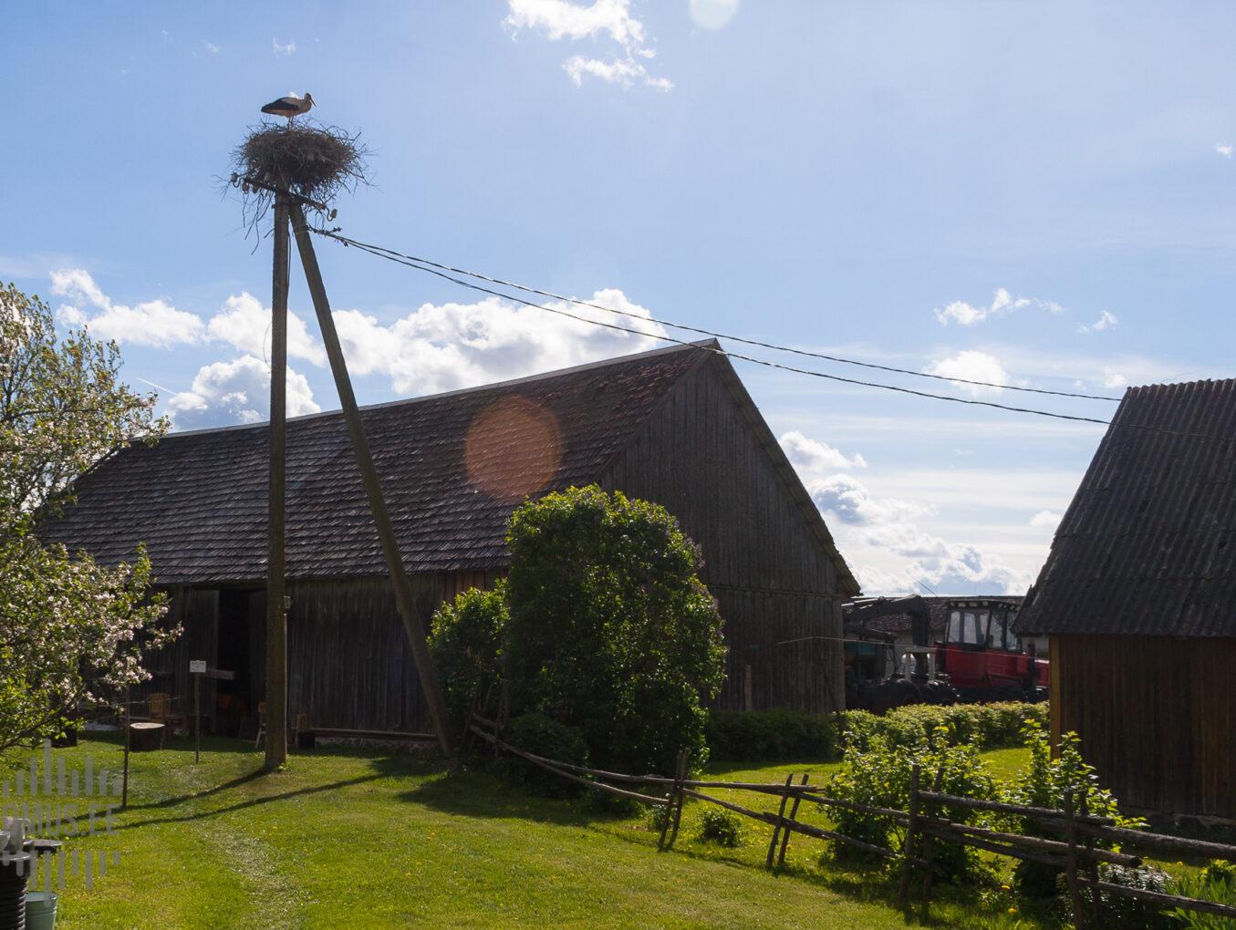 Kõlli küün (Pärnu-Jaagupi, Halinga)